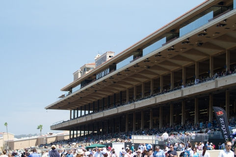 The crowds are out to see California Chrome go up against Dortmund in the San Diego Handicap